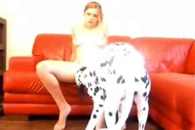 Ver videos pornos con animales gratis